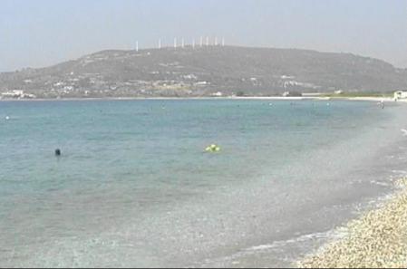 南部のビーチ(1)