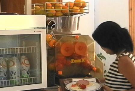 オレンジ絞り機