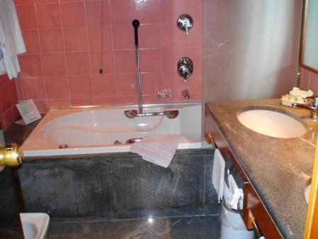 ミラノ ミケランジェロホテルの部屋