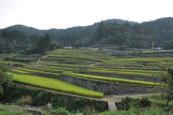 2011_09_10_10.jpg
