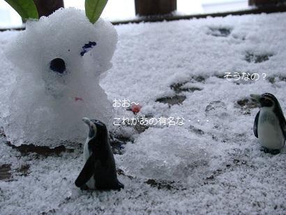2012 ブログ冬 048