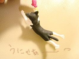 2012 きんちゃん春 018