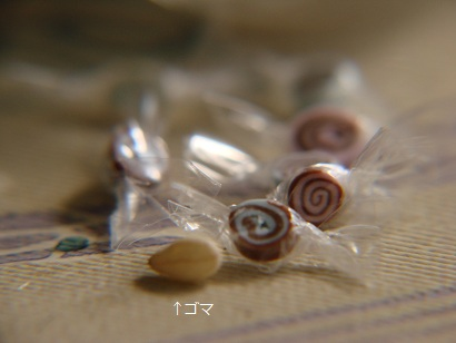 2012 きんちゃん春 014