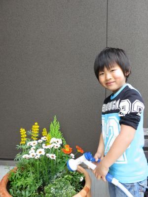 寄せ植え 石川県金沢市