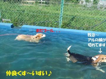 001_convert_20110923225438.jpg