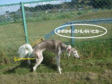 015_convert_20110923225007.jpg