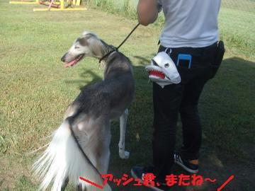 018_convert_20110923225336.jpg