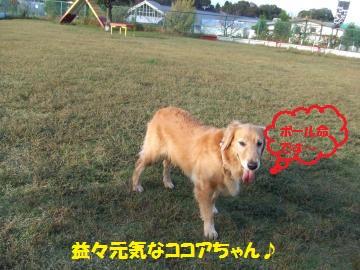 022_convert_20111025233840.jpg