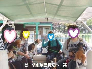 029_convert_20111011011232.jpg