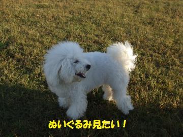034_convert_20111026002959.jpg