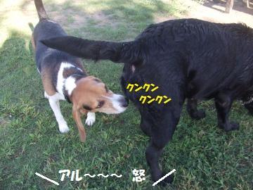 038_convert_20110923225804.jpg