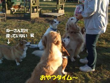 041_convert_20111023232951.jpg