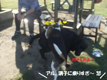 044_convert_20110923225858.jpg