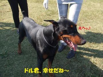 051_convert_20111020231527.jpg