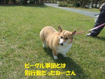 087_convert_20111011012833.jpg