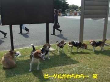 094_convert_20111010021009.jpg