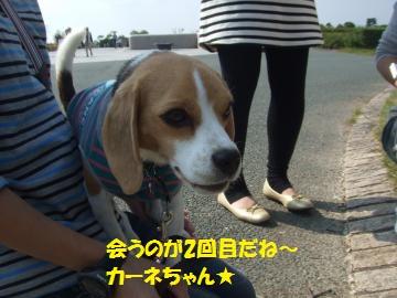 096_convert_20111011012550.jpg