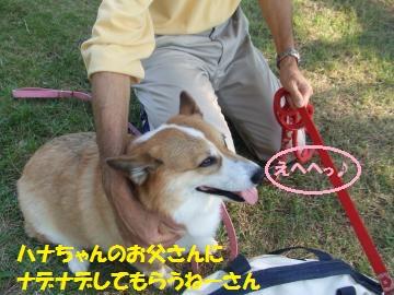 110_convert_20111012222546.jpg
