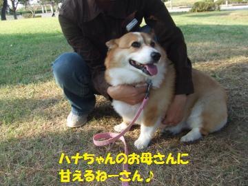 119_convert_20111012224753.jpg