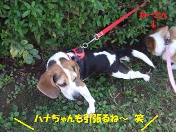 140_convert_20111012225524.jpg
