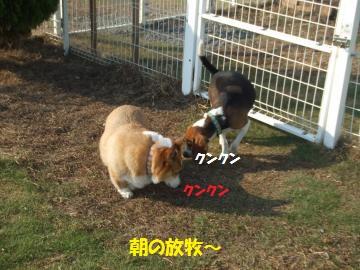 174_convert_20111014224552.jpg