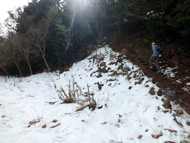 登山道の雪(61261 byte)