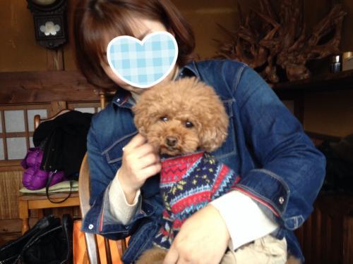 写真+ディちゃん_convert_20140209205502