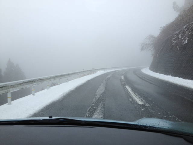 写真 雪道
