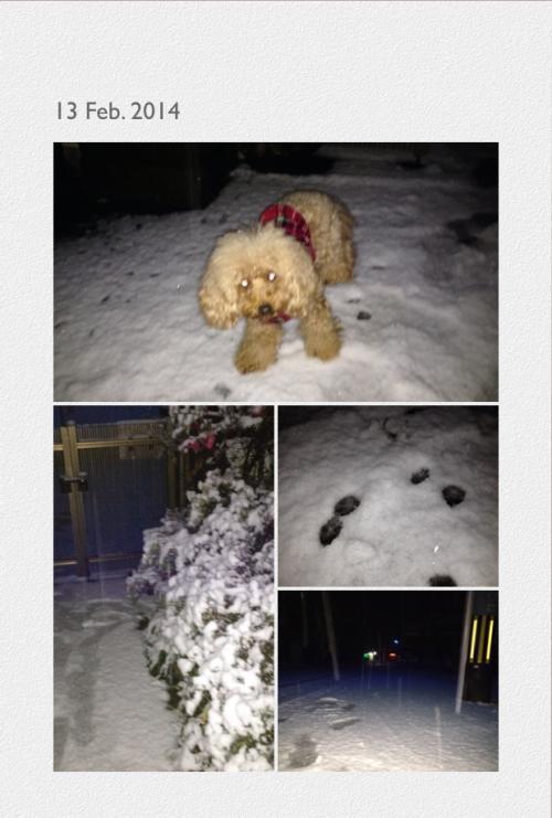 写真雪+2_convert_20140215213309