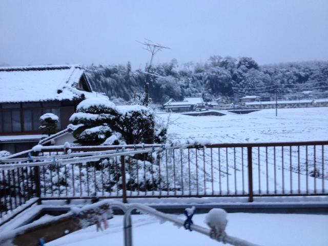 写真 雪3