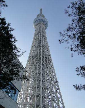 譚ア莠ャ繧ケ繧ォ繧、繝・Μ繝シ・狙convert_20130129200805