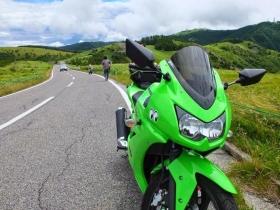 カエル色バイク2
