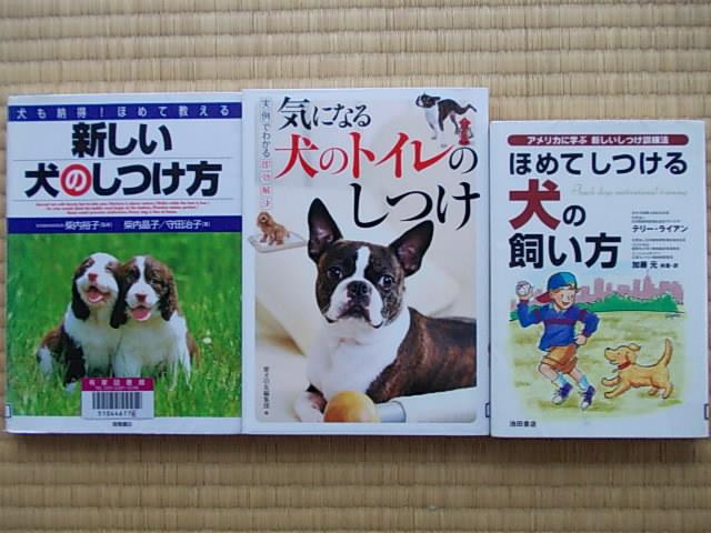 Books 20130201