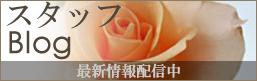 top_blog2.jpg
