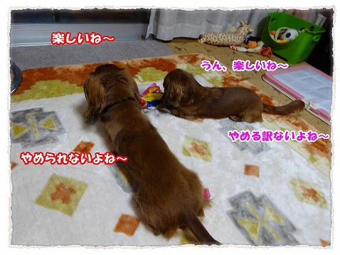 2014_2_1_3.jpg