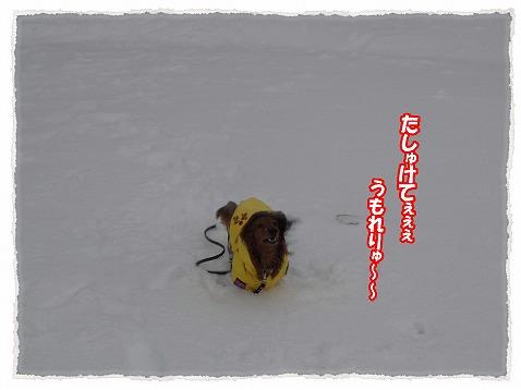 2014_2_8_3.jpg