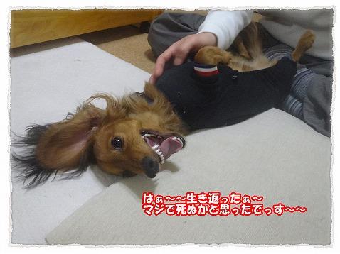 2014_2_8_5.jpg