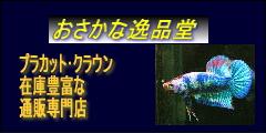 逸品堂バナー02