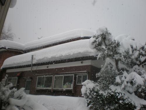 我が家・・・雪下ろししなきゃ~! つぶれるかな?