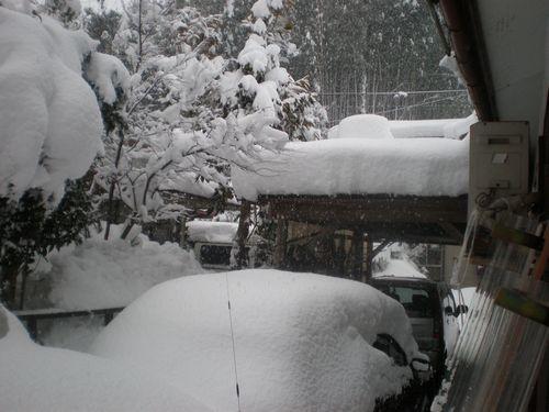 車庫の上 雪下ろししたのにミツバチの箱 又見えなくなりました