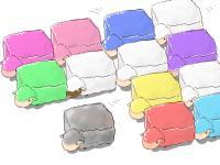 四角い羊大行進