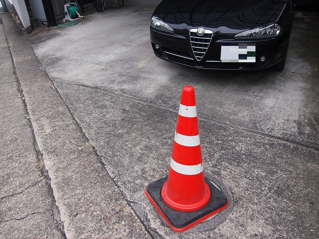 P9243038ロメ男