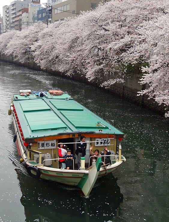 130329大岡川屋形船4