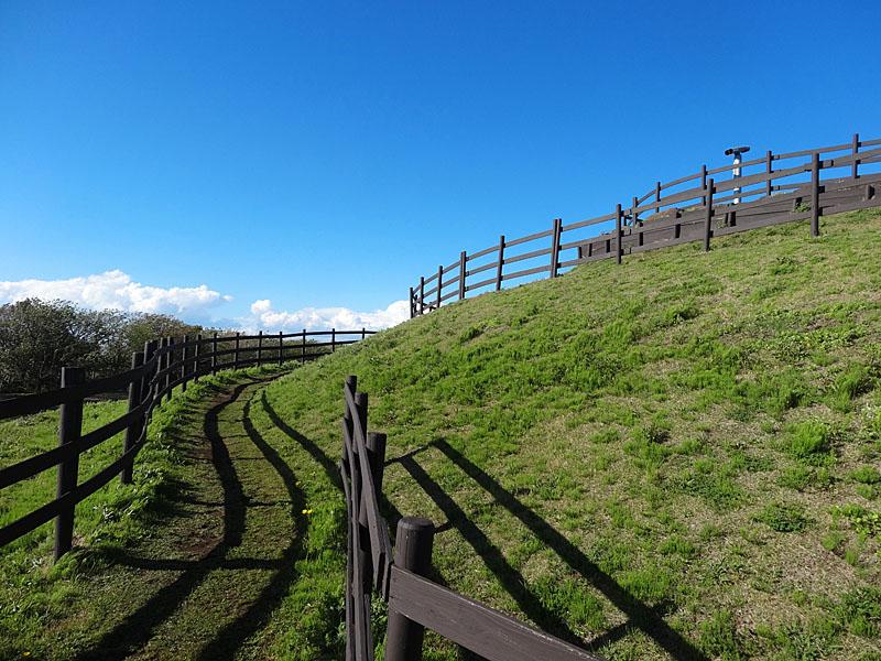 130407強風のソレイユの丘3