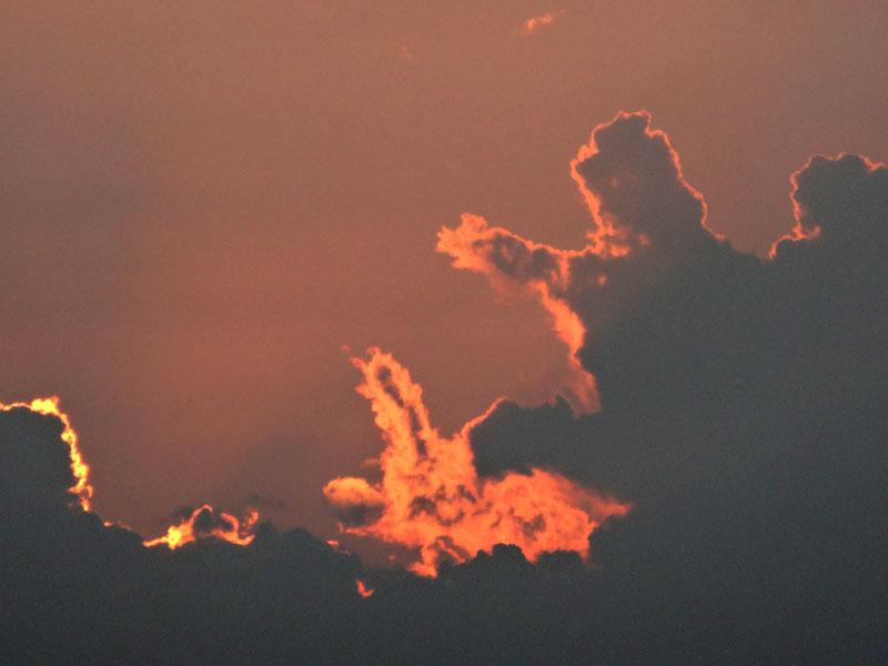 130708雲から生まれた動物たち2