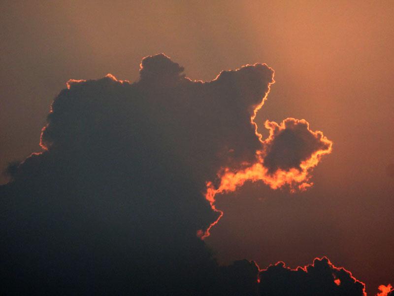 130708雲から生まれた動物たち4