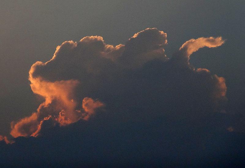 130708雲から生まれた動物たち5