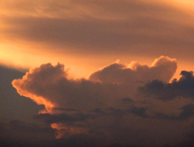 130708雲から生まれた動物たち6