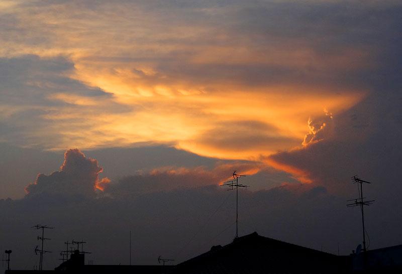 130708雲から生まれた動物たち7