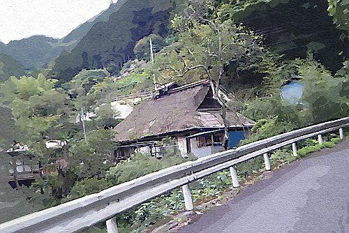 DSCF5938(ガッシュ)